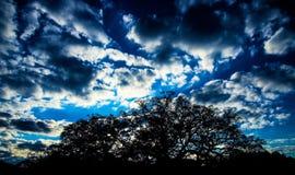 Nuvole di crepuscolo Fotografia Stock