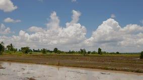Nuvole di lasso di tempo che passano il cielo con i campi video d archivio