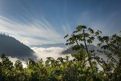 Nuvole di mattina nella vista dell'alta montagna Fotografia Stock