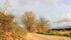 Nuvole di pioggia di Autumn Leaves Dirt Road With fotografie stock