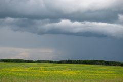 Nuvole di pioggia che si avvicinano sopra il terreno coltivabile, Saskatchewan, Canada immagine stock
