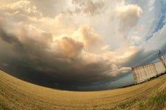 Nuvole di tempesta minacciose dietro un giacimento di grano e un silo di grano nel Texas, Stati Uniti fotografia stock