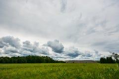Nuvole di Timelapse che si spostano per il campo Metraggio del paesaggio della primavera Fotografia Stock Libera da Diritti