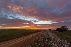 Nuvole e fiori Colourful fotografie stock