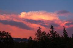 Nuvole e fumo da fuoco selvaggio Fotografia Stock