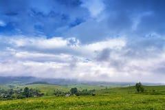 Nuvole e nebbia dopo la pioggia di molla Immagini Stock Libere da Diritti