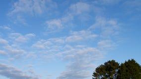 Nuvole leggere con un cielo blu Fotografia Stock Libera da Diritti