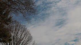 Nuvole muoventesi nell'orizzonte nel cloudscape bianco dei cieli blu puliti soleggiati nel rilassamento della stagione bella archivi video