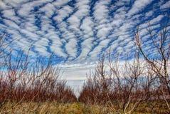 Nuvole speciali Fotografia Stock Libera da Diritti