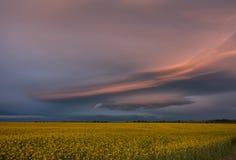 Nuvole stupefacenti Fotografie Stock Libere da Diritti