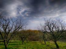 Nuvole tempestose nell'ambito di paesaggio verde Fotografia Stock Libera da Diritti