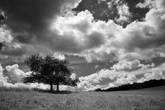 Nuvole temporalesche fotografia stock libera da diritti
