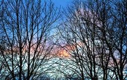 Nuvole variopinte nel cielo blu Immagine Stock Libera da Diritti