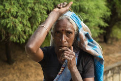NUWARA ELIYA, SRI LANKA - 14 de janeiro: Fêmea do retrato da mulher da máquina desbastadora do chá na estrada perto da fábrica do Imagens de Stock