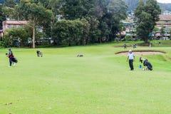 NUWARA ELIYA, SRI LANKA - JULY 17, 2016: Golf players at Victoria Golf Club in Nuwara Eliya tow royalty free stock photo