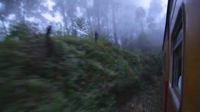 NUWARA ELIYA, SRI LANKA - MÄRZ 2014: Ansicht der nebeligen Landschaft Nuwara Eliya vom beweglichen Zug Der Eisenbahntransport Sri stock video