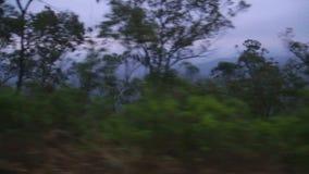 NUWARA ELIYA, SRI LANKA - MÄRZ 2014: Ansicht der nebeligen Landschaft Nuwara Eliya vom beweglichen Zug Der Eisenbahntransport Sri stock footage