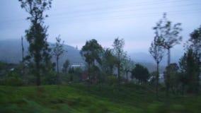 NUWARA ELIYA, SRI LANKA - MÄRZ 2014: Ansicht der nebeligen Landschaft Nuwara Eliya vom beweglichen Zug Der Eisenbahntransport Sri stock video footage