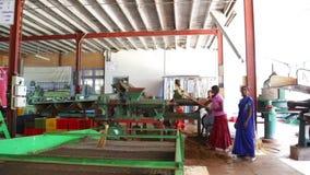 NUWARA ELIYA, SRI LANKA - MÄRZ 2014: Ansicht von den Frauen eines vier Einheimischen, die an einer Maschine in der Teefabrik in N stock video footage