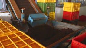 NUWARA ELIYA, SRI LANKA - MÄRZ 2014: Die Ansicht einer Maschine, die Tee in einer Teefabrik in Nuwara Eliya bearbeitet und produz stock video footage