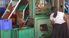 NUWARA ELIYA, SRI LANKA - MÄRZ 2014: Lokale Frau, die an einer Maschine in der Teefabrik in Nuwara Eliya arbeitet Sri Lanka ist d stock video footage