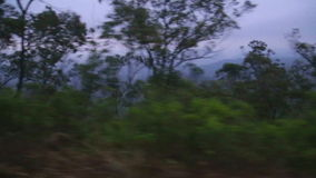 NUWARA ELIYA, SRI LANKA - MARCH 2014: View of the Nuwara Eliya foggy landscape from the moving train. The Sri Lankan railway trans. Ports millions of people stock footage