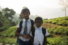 NUWARA ELIYA SRI LANKA, Stycznia 14 A młodzi Tamilscy ucznie dzieci herbacianej plantaci pracownicy którymi przy są grupa, - obrazy royalty free