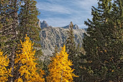 NV-Great Basin National Park-Wheeler Peak Stock Photography