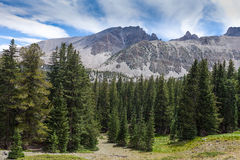 NV-Great Basin National Park-Wheeler Peak trail Stock Images
