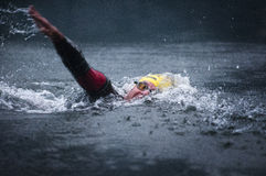 NXTRI 2012 Images stock