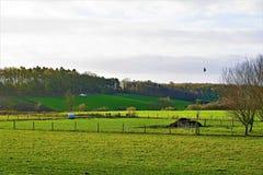 Nyårsdagengryning i de Yorkshire woldsna arkivfoton