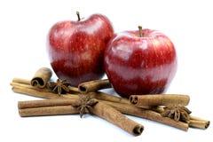 Ny äpplen och kanel Arkivfoto