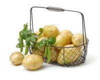 Ny ärta och potatis arkivfoton
