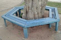 Ny återanvänd plast- van vid tillverkning parkerar bänken runt om träd arkivbilder