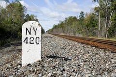 NY 420 Fotografia Stock