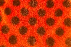 Ny abstrakt härlig bakgrund för design för textur för bomullstyg Arkivfoto