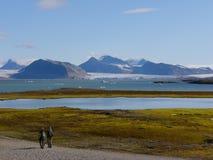 Ny Alesund op Spitsbergen - landschap Stock Afbeelding