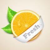 Ny apelsin Fotografering för Bildbyråer