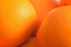 Ny apelsinbakgrund för makro Royaltyfri Bild