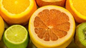 Ny apelsiner, citroner, grapefrukt och granatäpple royaltyfria bilder