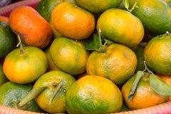 Ny apelsingrupp i en korg Arkivbild