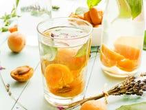 Ny aprikosdrink Arkivbild