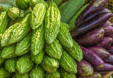 Ny aubergine och momordica Arkivbilder