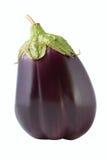 Ny aubergine som isoleras på vit bakgrund Arkivbild
