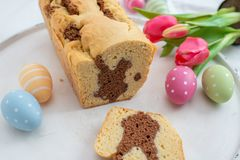 Ny bakad påsk Bunny Cake royaltyfri foto