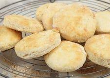 Ny bakad scones eller busi Arkivbilder
