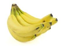 Ny banangrupp Arkivbild