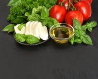 Ny basilika, tomater, mozzarella och olivolja caprese sallad I Royaltyfri Fotografi