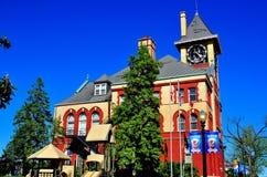 Ny Bern, NC: Stadshus Arkivbild