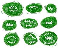 ny 100%, bio, organiskt, ecomat Rå grön produkt Vektoruppsättning av sunda etiketter för organisk mat Grönsaker sidor, bär Ve vektor illustrationer